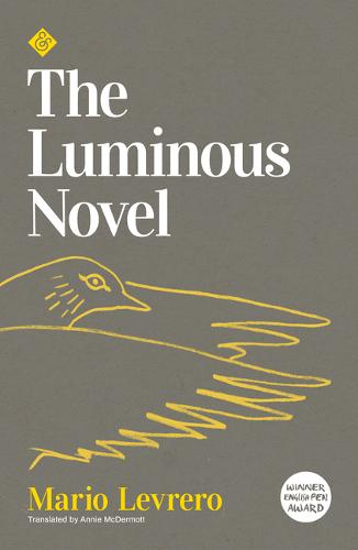 The Luminous Novel, by Mario Levrero